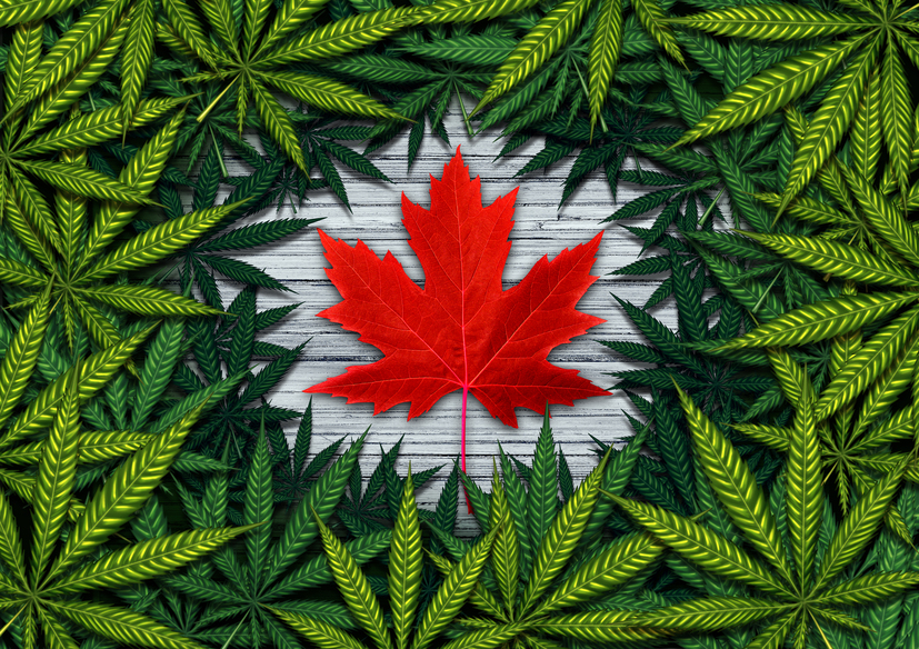 Marijuana is to be legalized in Canada